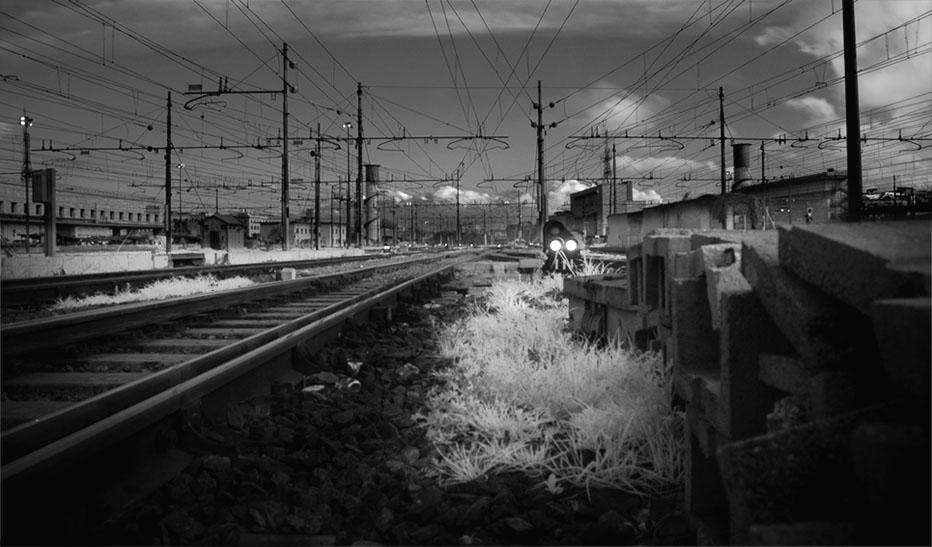 Dark Railways and White Grass