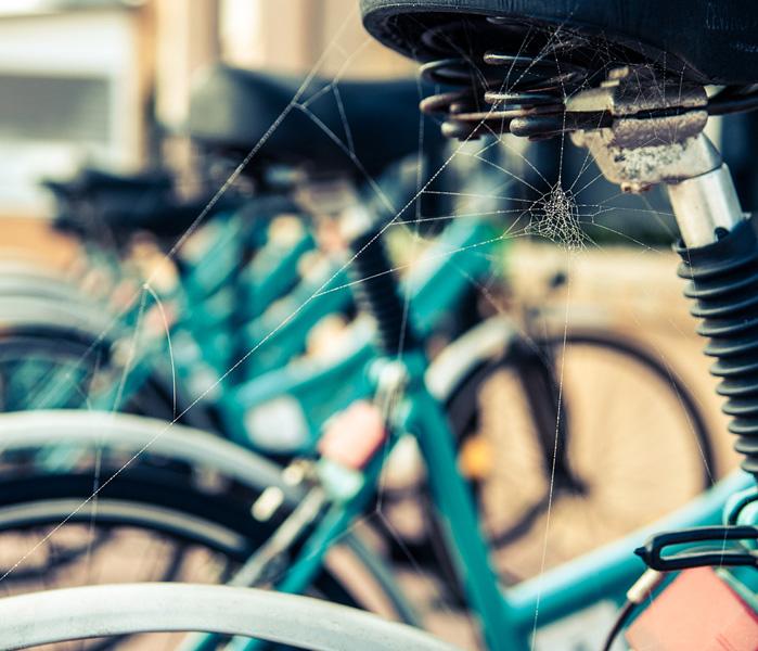 Melancholic Bikes