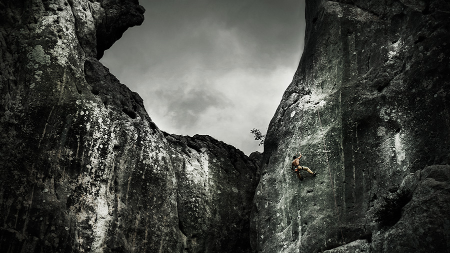 climbing the bear