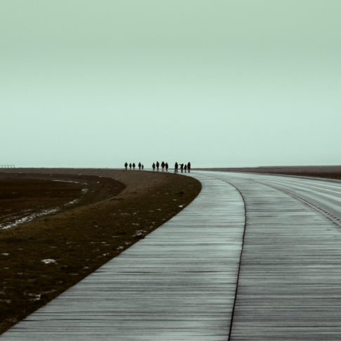 people walkin to the horizont